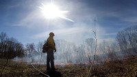 Officials ignite fields to prevent forest fires