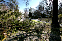 Strong winds do damage in Princeton