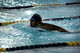 High School girls swimming- Trenton at Nottingham 2015-12-15