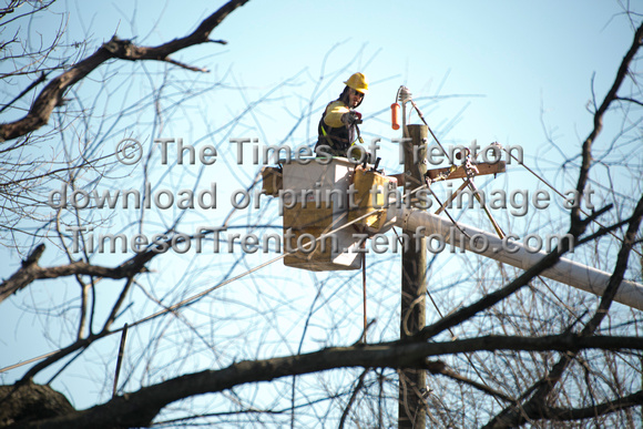 Times of Trenton photos | Strong winds knock over trees in ...