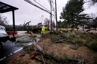 Downed tree and electrical wires block road in Robbinsville