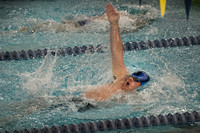 High School boys swimming West Windsor South at Notre Dame 2015-