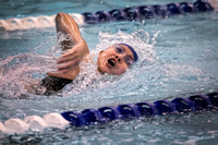 High School girls swimming Notre Dame at Princeton 2015-12-17